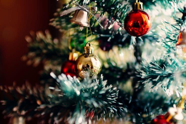 stockvault-christmas-tree185412