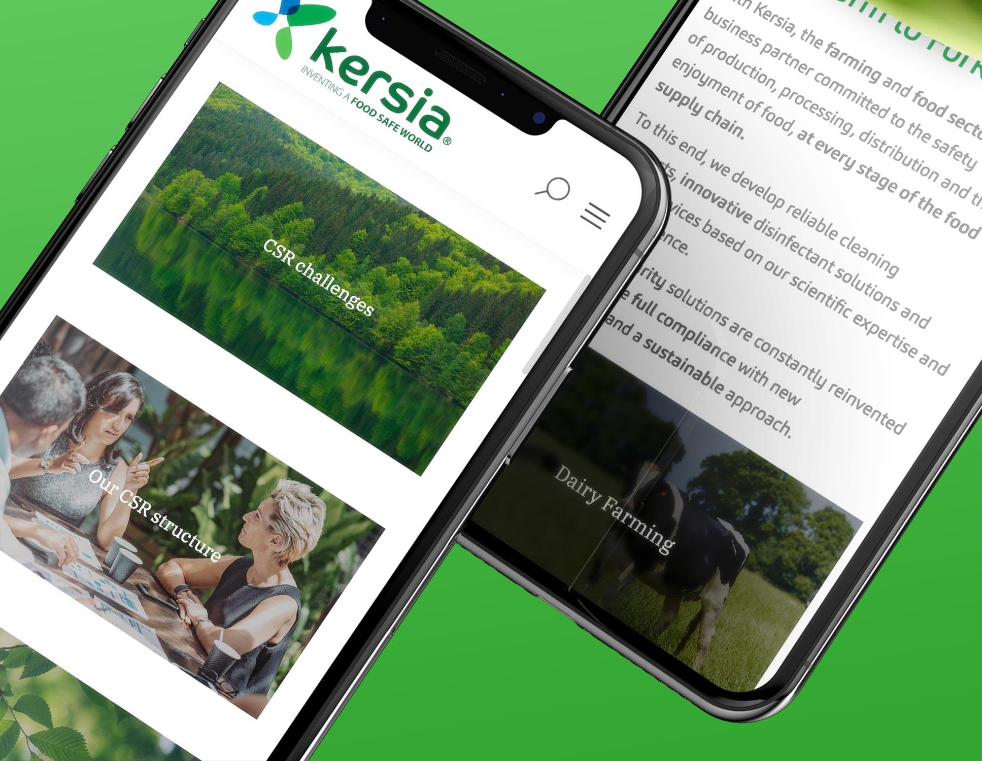Refonte du site mobile Kersia par Webperfect