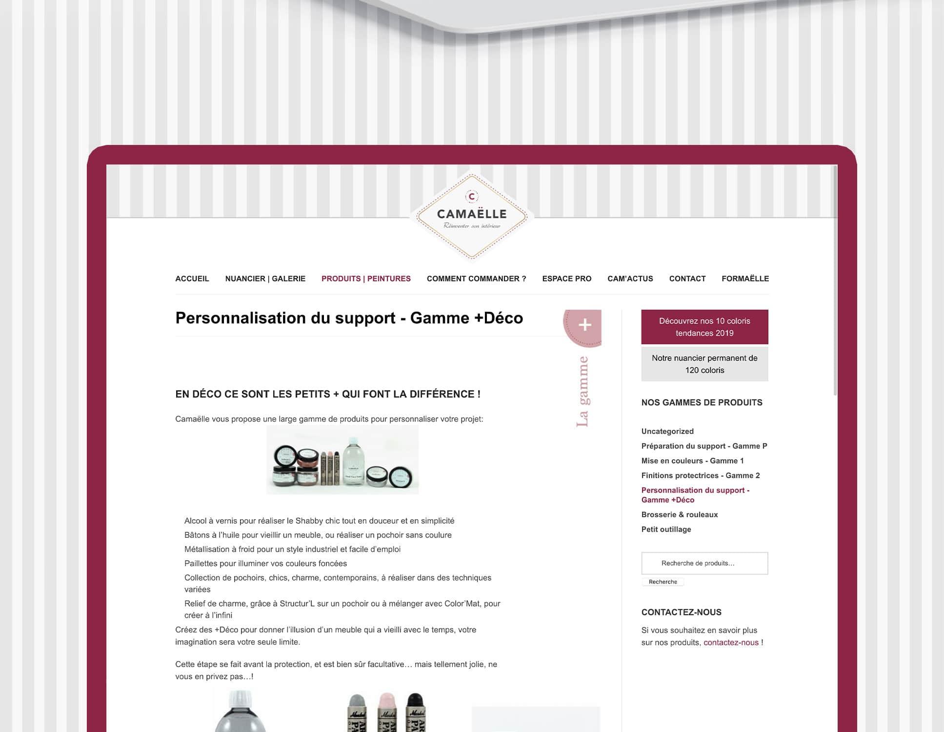 Résultat refonte site Camaelle par Webperfect